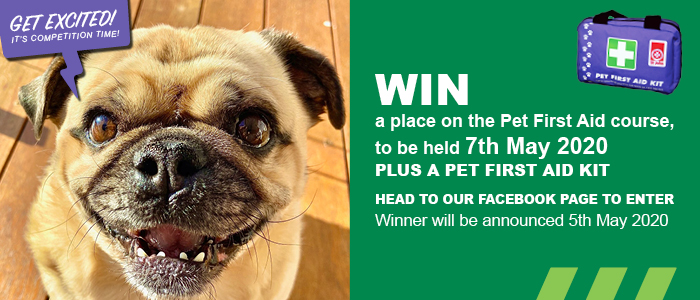 Get excited! It's competition time!